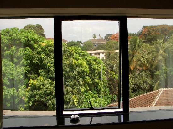 The Menino Regency: view from the window 2