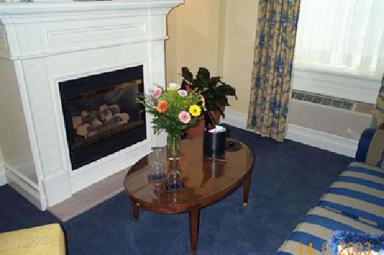 Inn On The Twenty: Laura Secord Suite - elegant