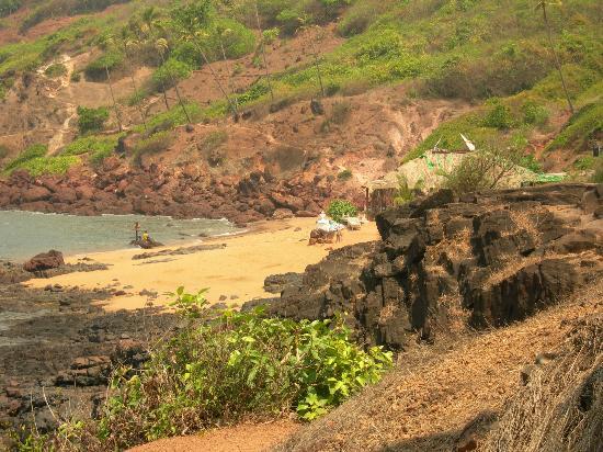 Riverside Regency Resort: walking the headland in goa