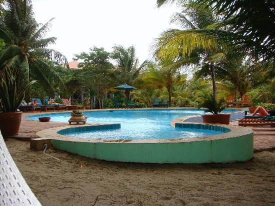 Hamanasi Adventure and Dive Resort : Pool