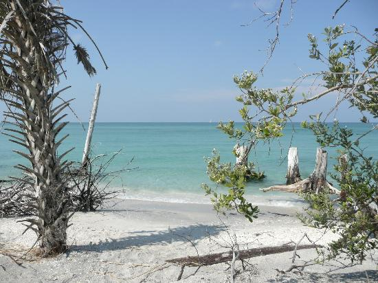 Rotonda West, FL: Stump Pass Beach