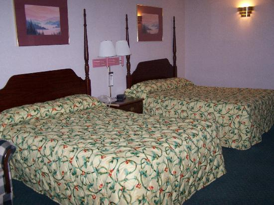 Knights Inn - Ruther Glen: Two Queen Beds