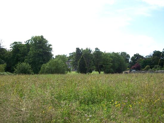 Boath House from the wild flower meadow