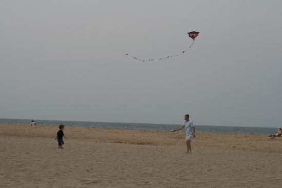 Sea Colony Resort: Flying kites in the evening