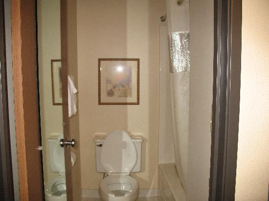 Baymont Inn & Suites Detroit Airport/Romulus: Hotel room