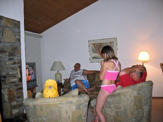 Fox Run Resort: Living Room