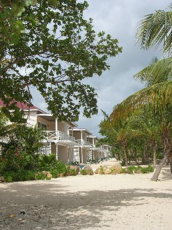 Galley Bay Resort: The New Premum Beachfront Suites