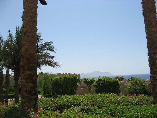 Four Seasons Resort Sharm El Sheikh: Jardines del Hotel