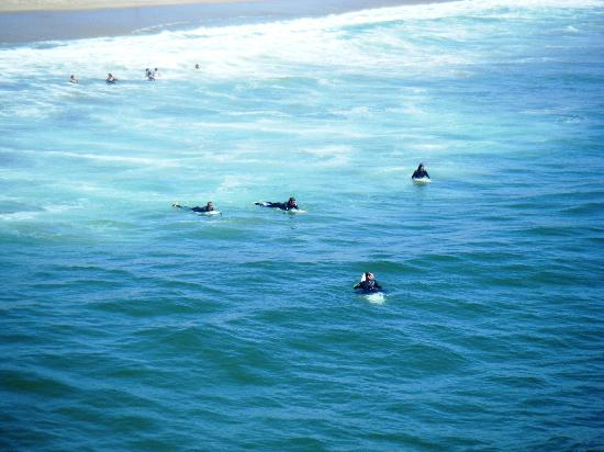 The Surfers at Manhattan Beach