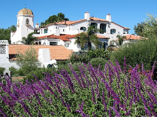 Ojai Valley Inn & Spa: lavender is growing all over the property (Spa Ojai in the background)