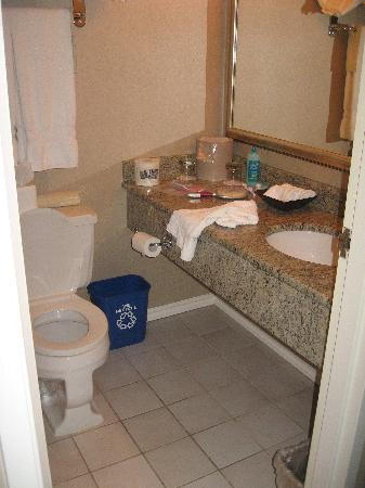 Chateau Victoria Hotel and Suites: Bathroom