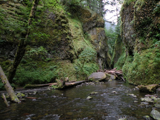 Hood River, OR: Oneonta Gorge
