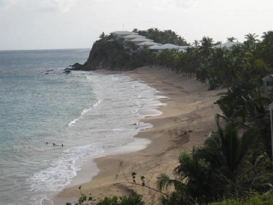 Curtain Bluff Resort: View from curve on Old Road!
