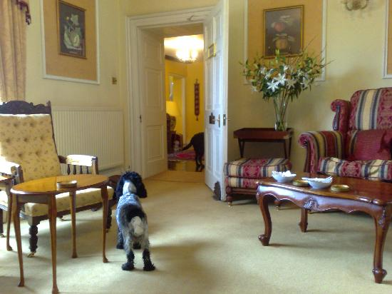 Blagdon Manor Hotel: Lucy enjoying afternoon tea with us