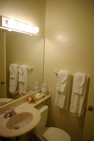 Hotel Carmel: small toilet