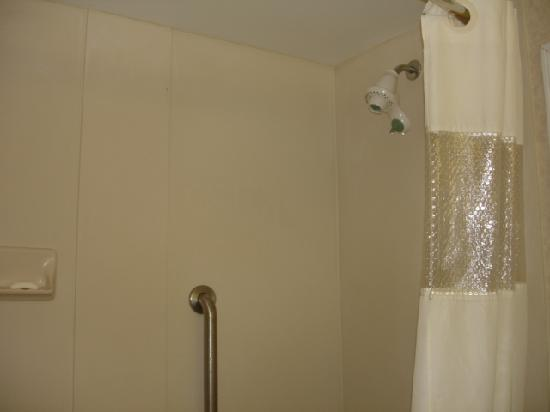 Wingate by Wyndham Atlanta/Six Flags Austell: Shower