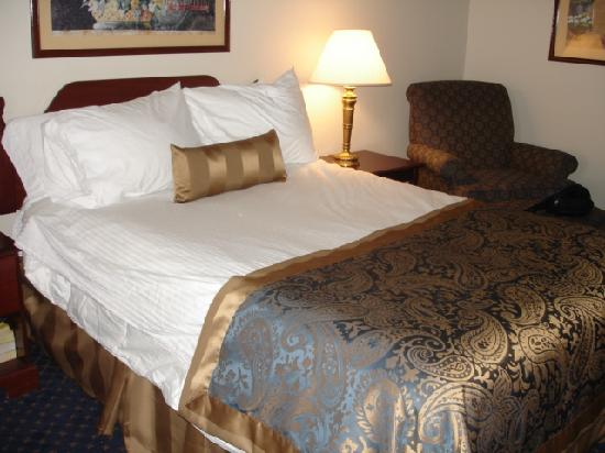 Wingate by Wyndham Atlanta/Six Flags Austell: Bedroom