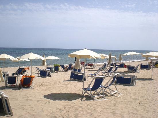 Hotel Mare Pineta: spiaggia mare pineta