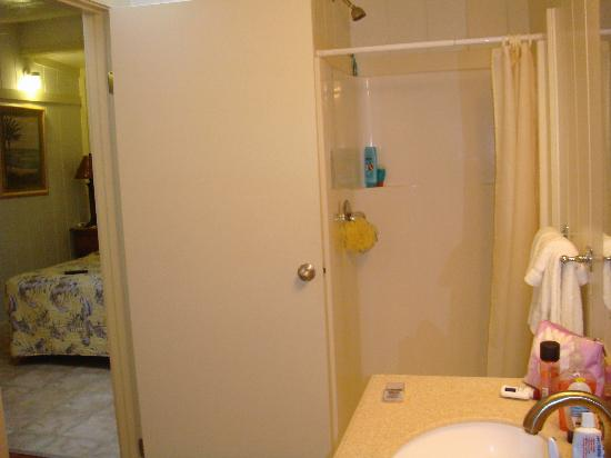Kauai Palms Hotel: shower & sink