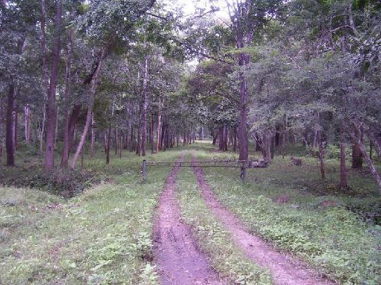 Vijayawada, India: Rajiv gandhi park