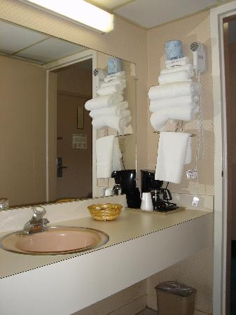 Cambridge Gateway Inn: Clean bathroom