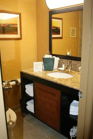 Holiday Inn Houston Intercontinental Airport: Bathroom granite vanity