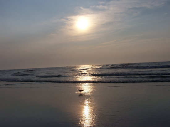North Wildwood, Nueva Jersey: Morning shot of beach by Horizon Motor Inn