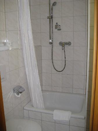 Hotel Domstern: Shower in the bathroom
