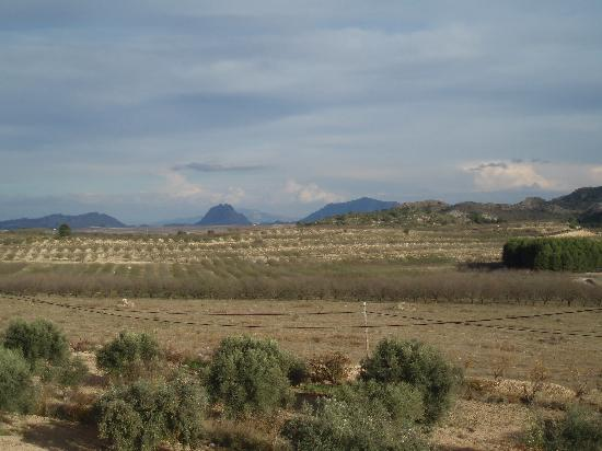 Calasparra, Spanyol: View from room