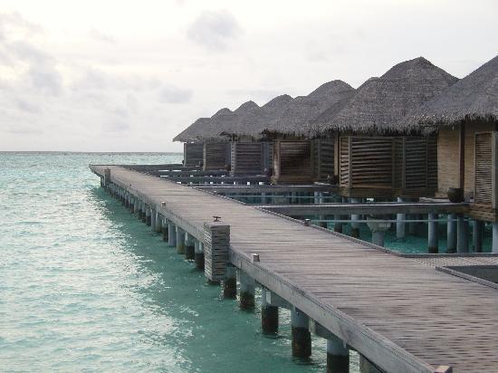Anantara Veli Maldives Resort: the walk to bungalow