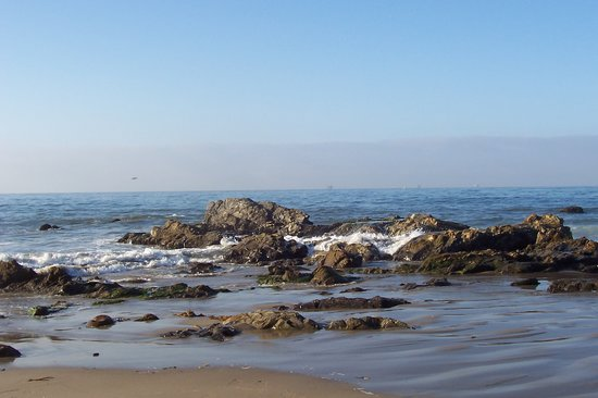 Carpinteria State Beach Campground : Carpinteria Surf