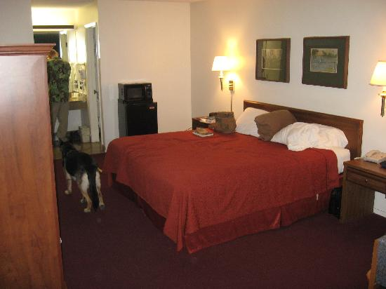 Quality Inn: Here is our room (211)