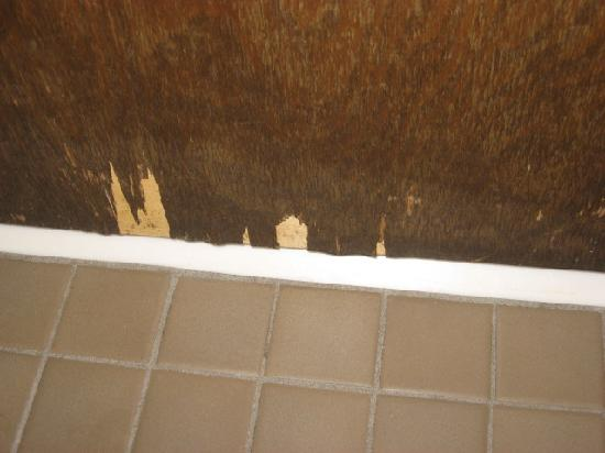 Magnuson Franklin Square Inn: Bottom of bathroom door