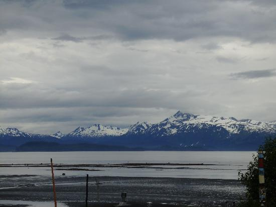 Driftwood Inn & Homer Seaside Lodges: Looking out our window