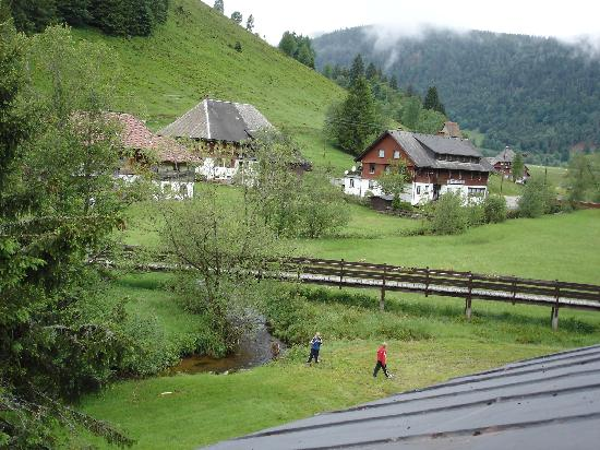 Gastehaus Grunenberg: View out the back with the kids enjoying themselves after a day being couped up in the car