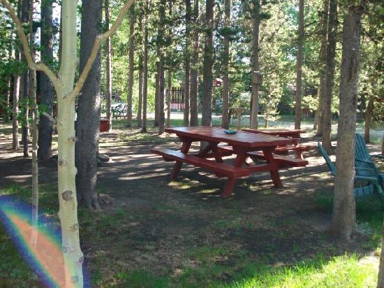 Rustic Wagon RV Campground & Cabins: backyard3