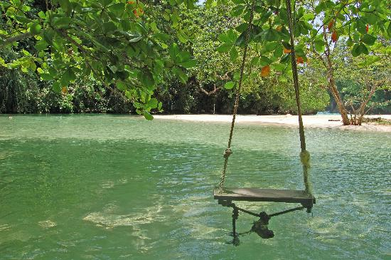 Frenchman's Cove: The swing in the cove...