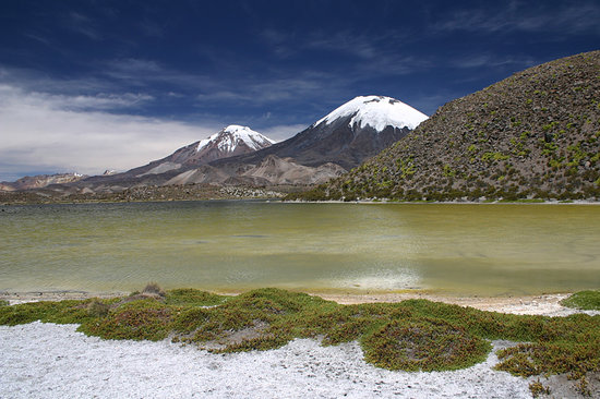 Arica, Chile: Parinacota & Pomerape | Lauca National Park | Chile