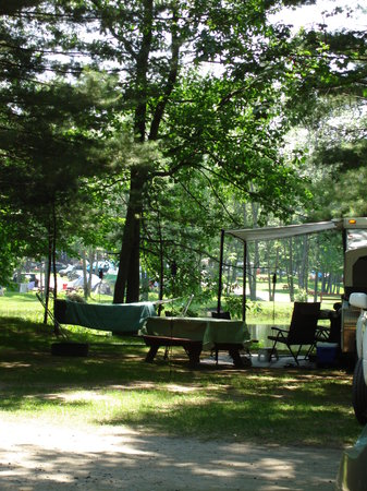 Bayley's Camping Resort: view of campsite/pond across street