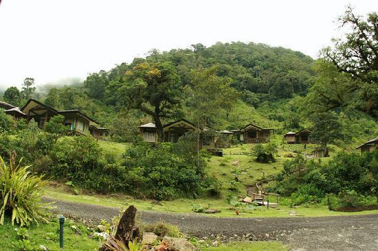 El Silencio Lodge & Spa: Villas on the hillside