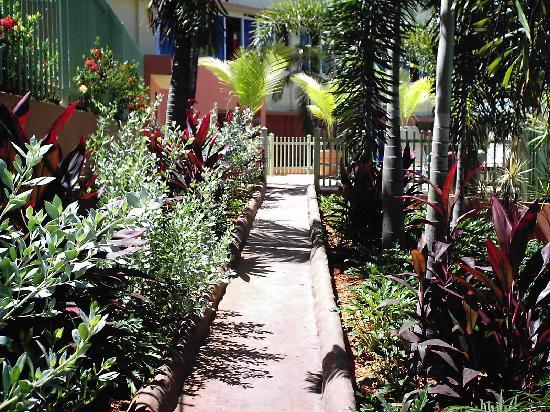 Hotel Cielo Mar: jardines
