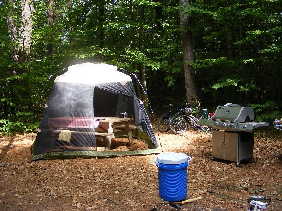 DAR State Forest: More campsite