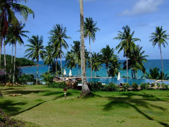 Koh Kood Beach Resort: Pool overlooking the sea