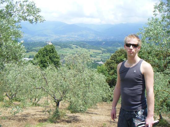 Agriturismo Bellavista: Rural view across valley