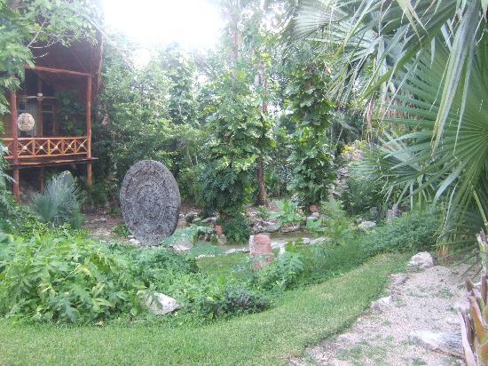 Jardin du restaurant picture of viva wyndham azteca for Resto jardin