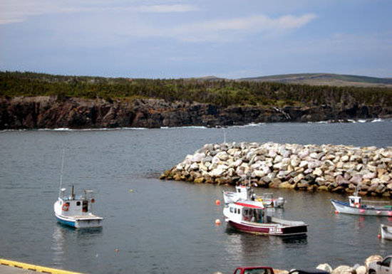 Terranova, Canada: fishing boats...