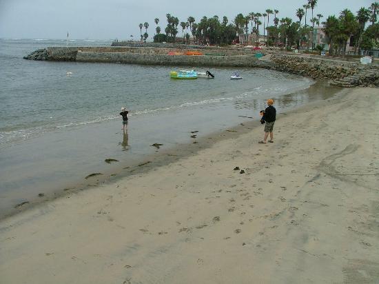 Estero Beach Hotel Resort The At Low Tide