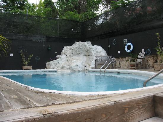 Altamont West Hotel: Pool