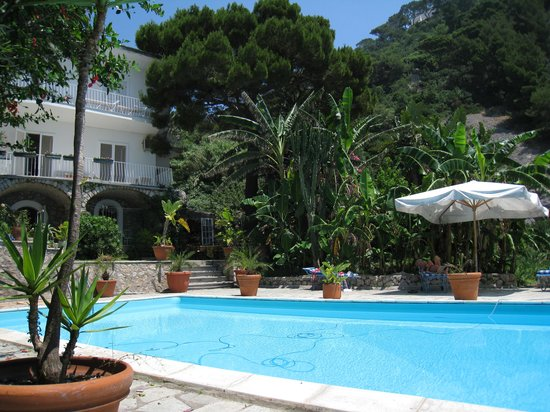 Tirrenia Roberts B&B : Good swimming pool and garden