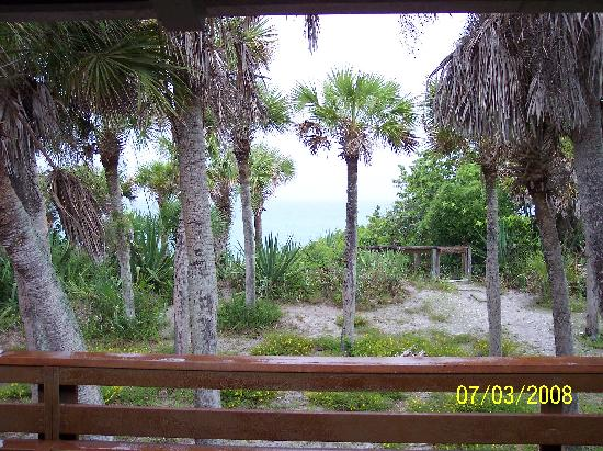 Manasota Beach Club: Our patio view